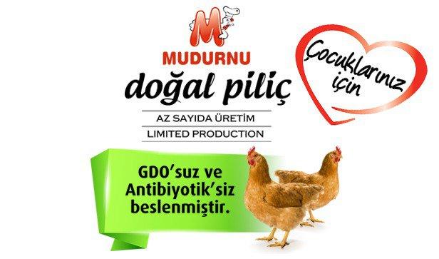 mudurnu-gurme-tavuk